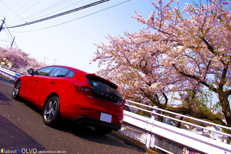 volvo-photo-cherry-blossoms-v40-01